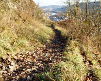 donau-trails